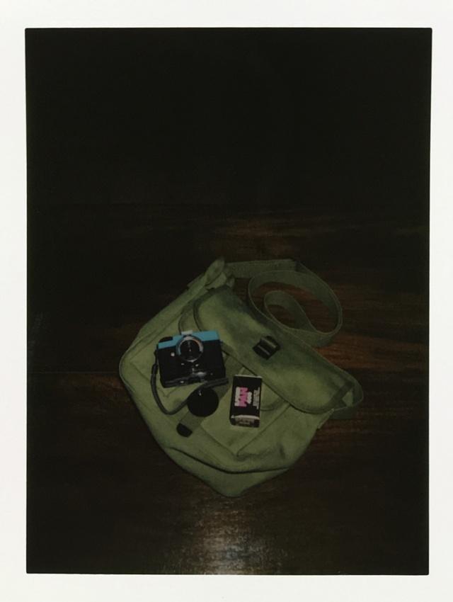 010-dianamini-bag-film-wp