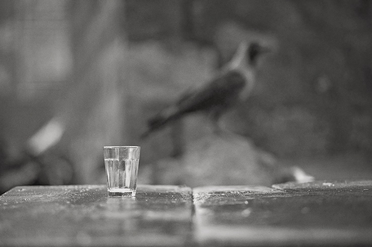 018 - crow and glass