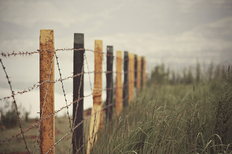 019 - the fence