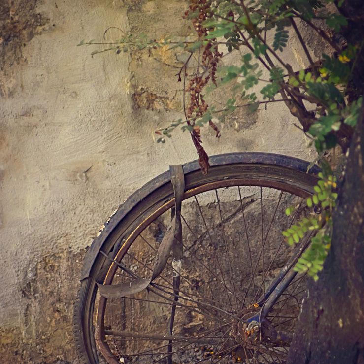 056 - rusted bicycle