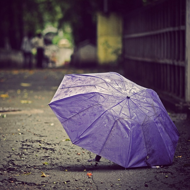 075 - sq in a cirlce - umbrella